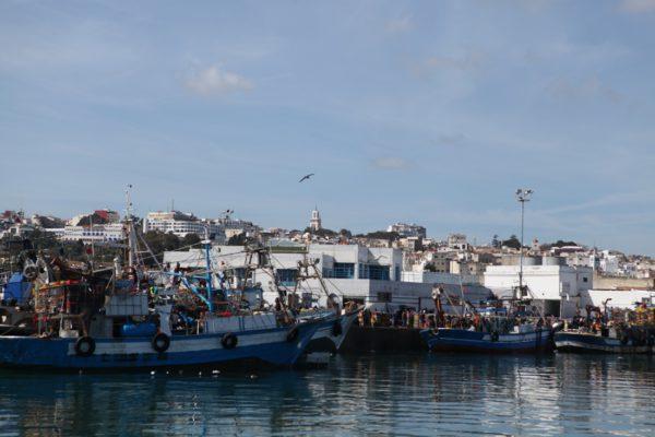 Tangier Meilentörn